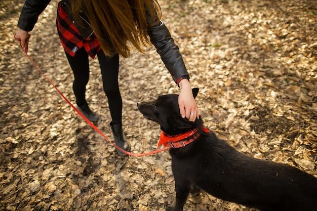 Hermosa mujer acariciando a su perro al aire libre
