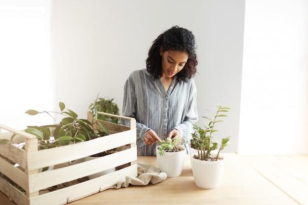 Hermosa mujer africana botánico sonriente cuidado para las plantas en el lugar de trabajo. pared blanca.