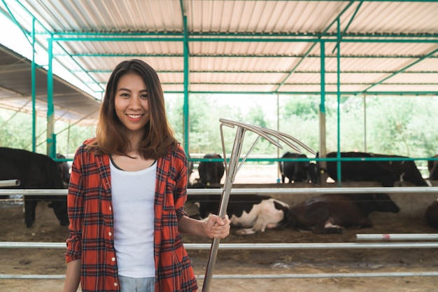 Hermosa mujer asiática o granjero con y vacas en el establo en la granja de productos lácteos-agricultura