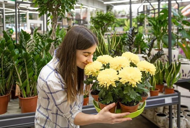 Hermosa mujer joven en una floristería y elegir flores.
