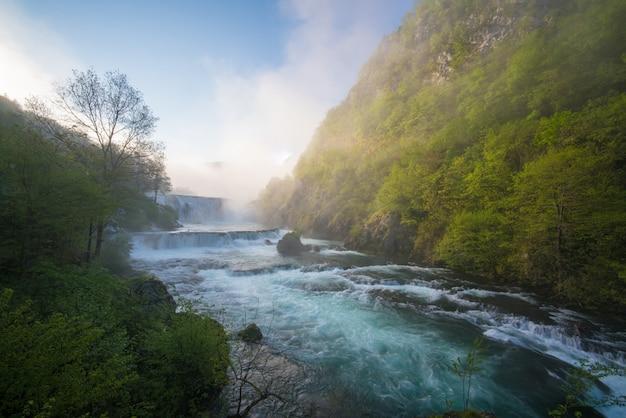 Hermosa naturaleza con agua corriente alrededor