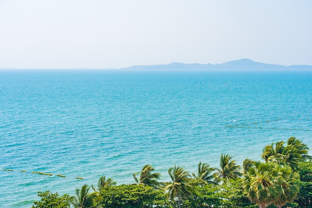 Hermosa naturaleza tropical de playa mar océano bahía alrededor de palmera de coco