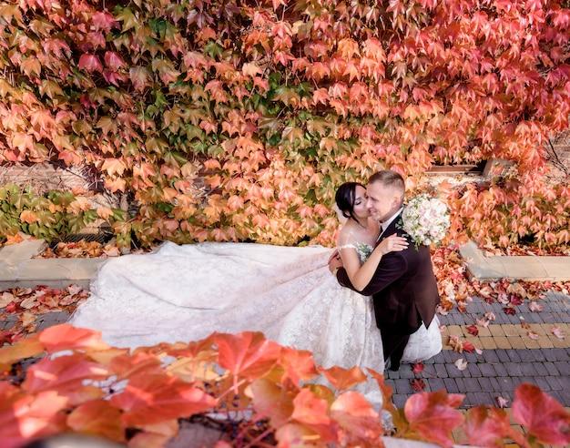 Hermosa novia morena está besando feliz novio en la mejilla cerca de la pared cubierta de hiedra roja en el día de la boda