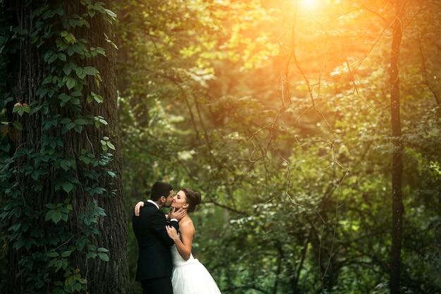 Hermosa pareja de novios posando en el bosque