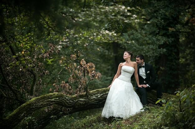Hermosa pareja de novios sentados en el bosque en un árbol caído
