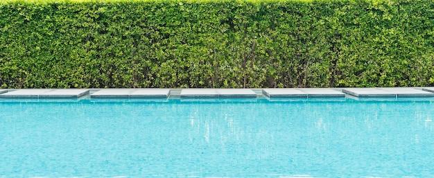Hermosa piscina de lujo con palmeras