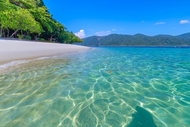 Hermosa playa de arena blanca con palmeras en la isla de lipe, tailandia