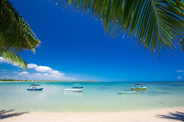Hermosa playa y mar tropical
