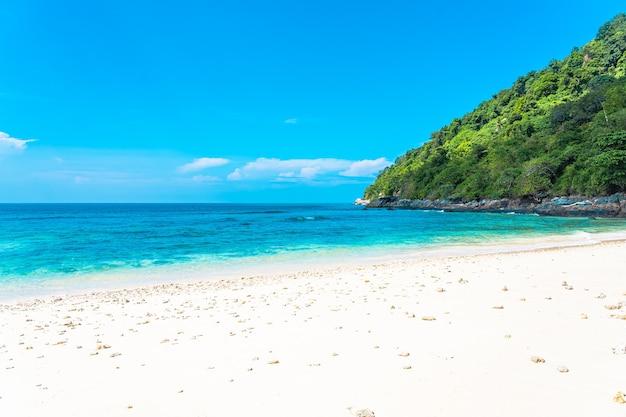 Hermosa playa tropical mar océano con coco y otro árbol alrededor de una nube blanca en el cielo azul