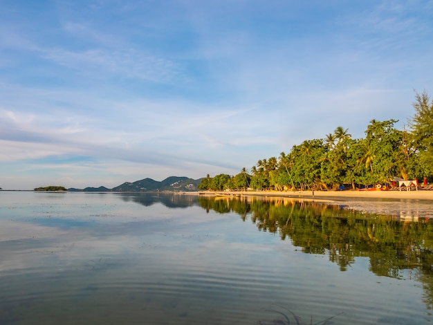 Hermosa playa tropical y mar con palmera de coco.