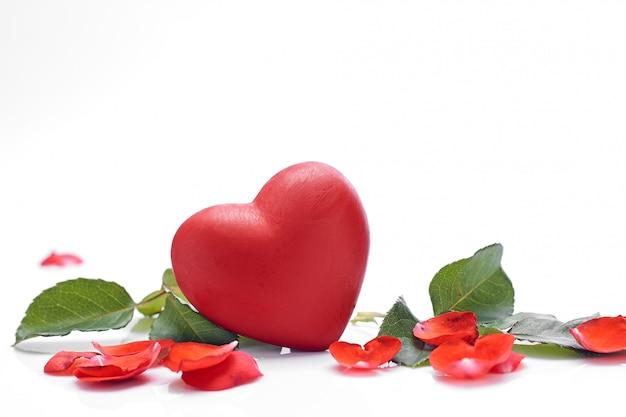 Hermosa rosa roja con corazón sobre un blanco