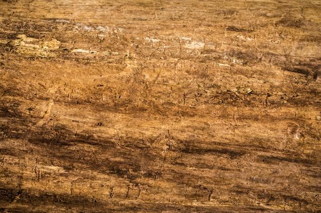 Hermosa textura de madera vieja natural, primer plano