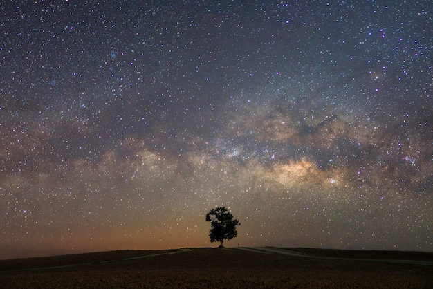 Hermosa vía láctea con un solo fondo de árbol. paisaje con cielo estrellado nocturno y un árbol en la colina.