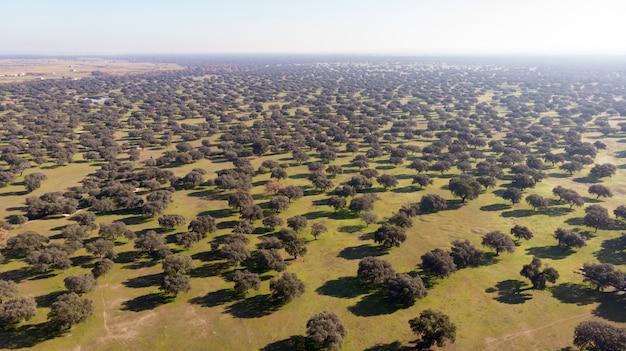 Hermosa vista aérea de la coutryside