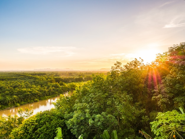 Hermosa vista aérea con paisaje de bosque verde en el crepúsculo