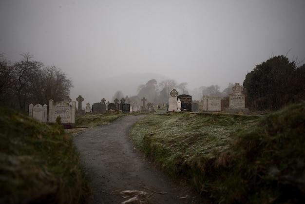 Hermosa vista de un antiguo cementerio rodeado de árboles capturados en la niebla