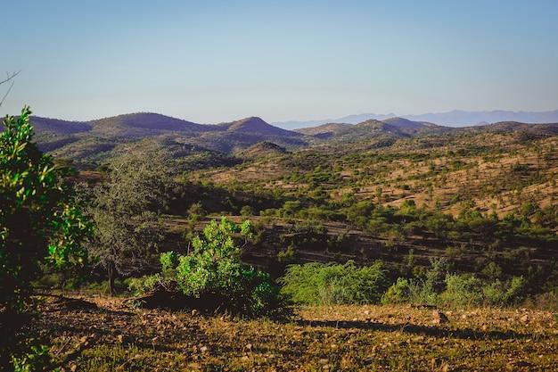 Hermosa vista de un campo con pequeñas montañas y árboles cortos