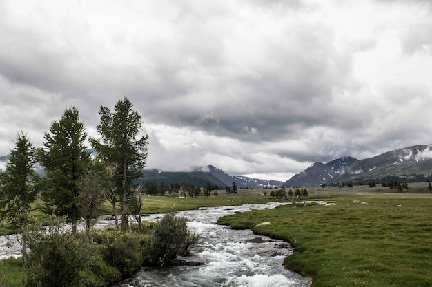Hermosa vista de una corriente rocosa de agua en un terreno de césped con árboles y montañas