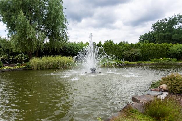 Hermosa vista del estanque con fuente en el parque en el frío día de otoño
