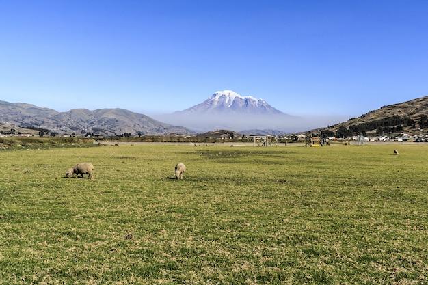 Hermosa vista de la montaña chimborazo en ecuador durante el día