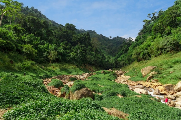 Hermosa vista de las montañas verdes y una pequeña cascada de agua.