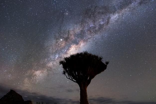 Hermosa vista del paisaje nocturno de la vía láctea y el núcleo galáctico sobre el parque nacional etosha camping, namibia