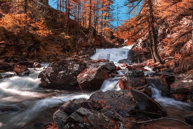 Hermosa vista del paisaje otoñal y una cascada en un bosque