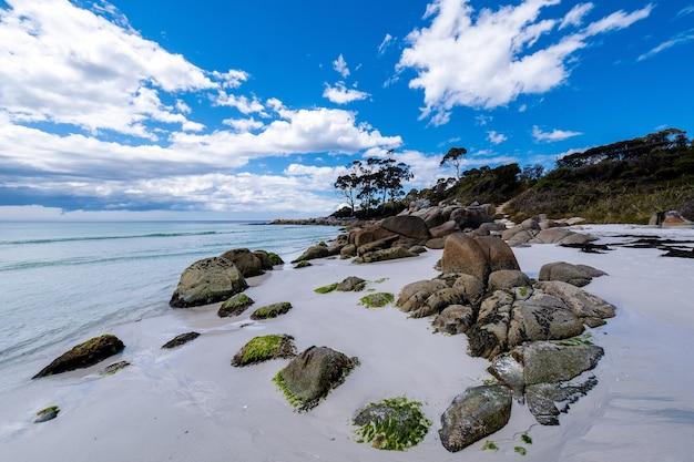 Hermosa vista de una playa con agua azul limpia bajo un cielo brillante