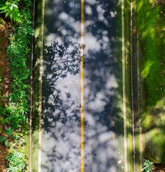 Hermosas carreteras de asfalto en el bosque natural en la vista superior