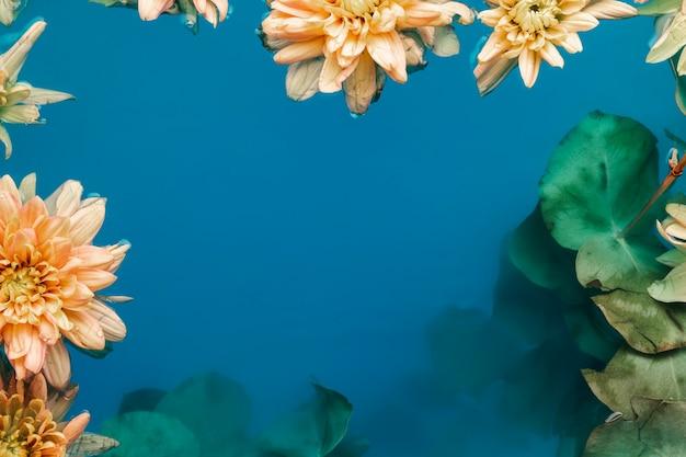 Hermosas flores en agua con espacio de copia