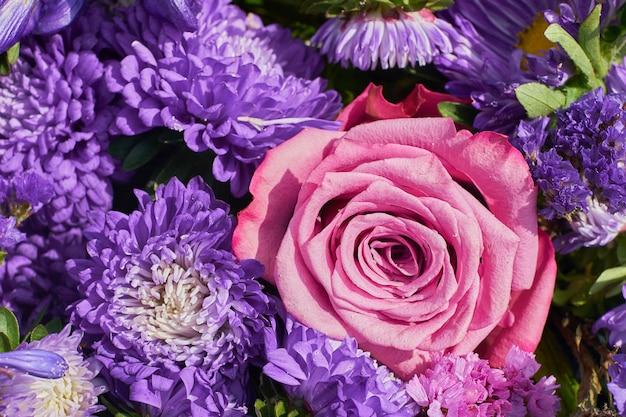 Hermosas flores. aster flores y rosa rosa. vista superior