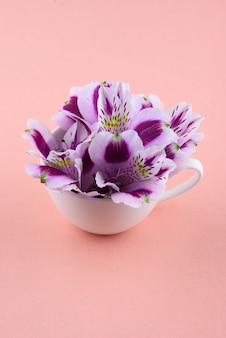 Hermosas flores de astromeria con una taza blanca sobre un fondo rosa
