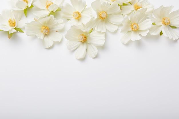 Hermosas flores blancas hacia arriba, hacer adornos, copiar espacio para su diseño o contenido promocional.