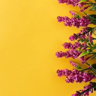 Hermosas flores de color rosa sobre fondo amarillo