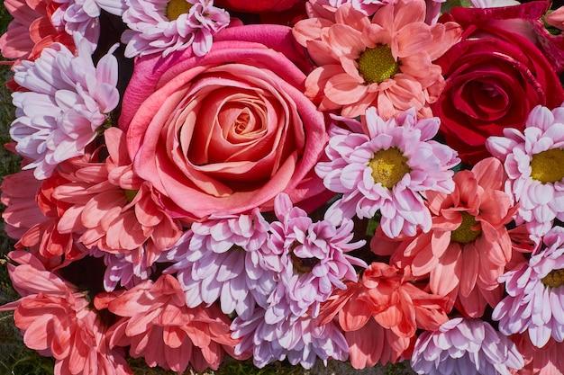 Hermosas flores de fondo. ð¡crisantemo, flores de aster y rosa rosa.