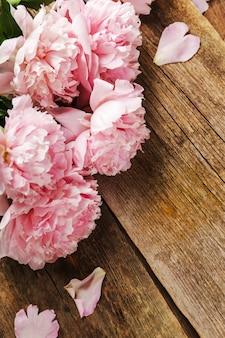 Hermosas flores frescas de peonía