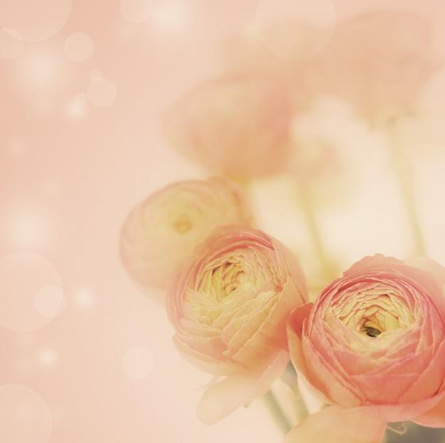 Hermosas flores hechas con filtros de color.