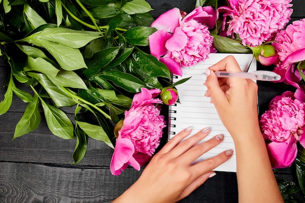 Hermosas flores de peonía rosa sobre negro.