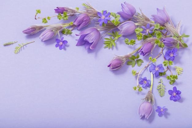Hermosas flores de primavera sobre fondo azul