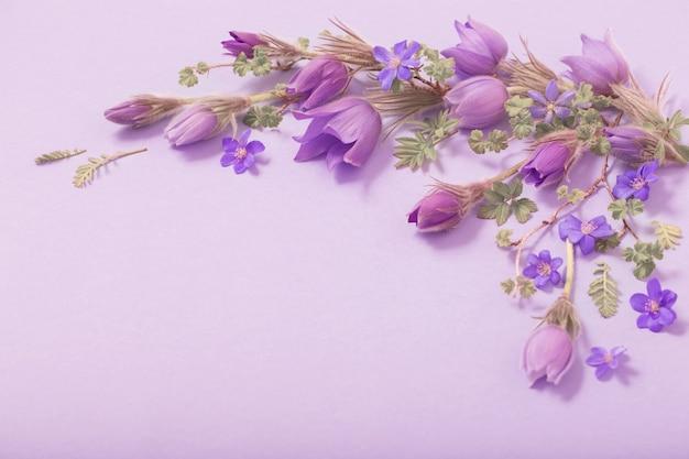 Hermosas flores de primavera sobre fondo morado