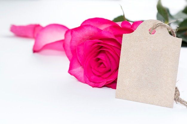 Hermosas flores rosa rosa y una etiqueta para escribir felicitaciones