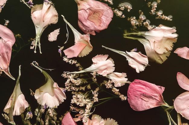 Hermosas flores rosadas en aguas negras