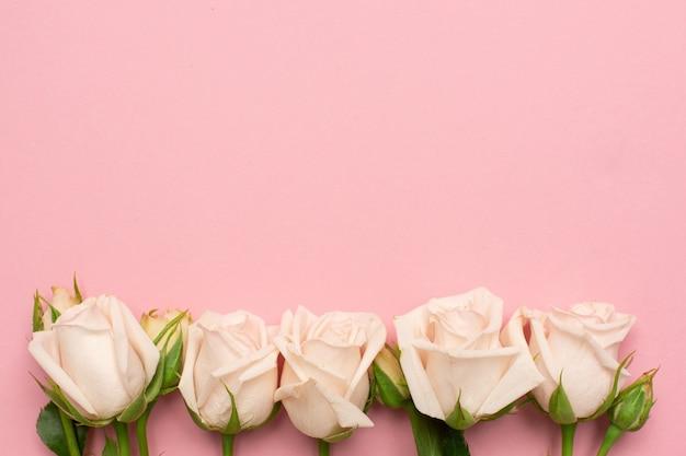 Hermosas flores de rosas blancas sobre fondo rosa con espacio de copia para su texto