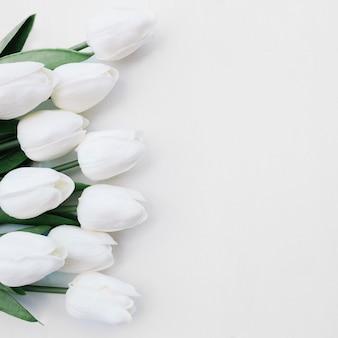 Hermosas flores sobre fondo blanco con espacio a la derecha