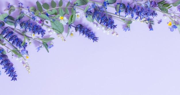 Hermosas flores de verano sobre fondo azul