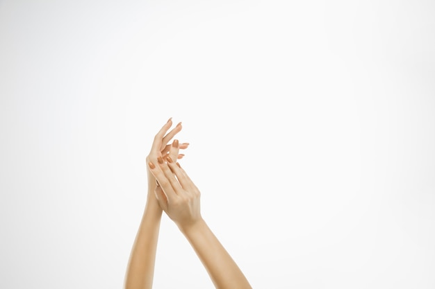 Hermosas manos femeninas aisladas en blanco