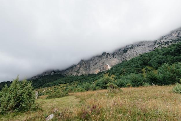 Hermosas montañas y vida silvestre a su alrededor en un día soleado