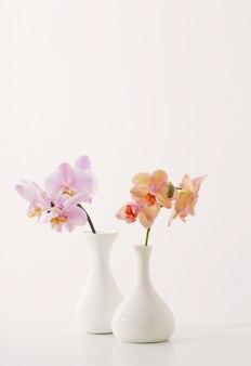 Hermosas orquídeas en florero blanco sobre mesa blanca