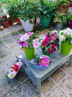 Hermosas peonías en florero, cubeta y macetas.