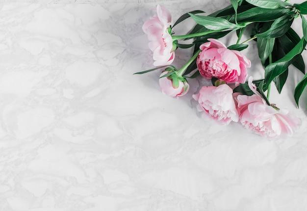 Hermosas peonías rosas sobre un fondo de mármol
